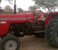 MF 265 for sale